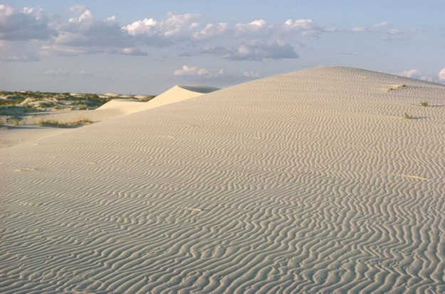 monahans-sandhills-state-park-texas