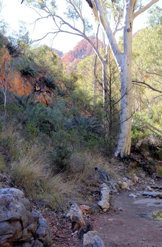 Staley chasm path
