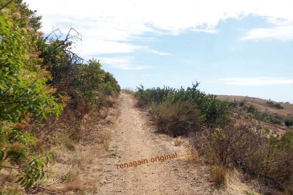 trail along black mountain