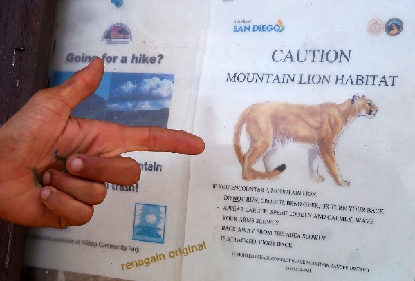 Notice at kiosk: Caution Mountain Lion Habitat.