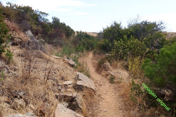 sunny hot trail heading to shade